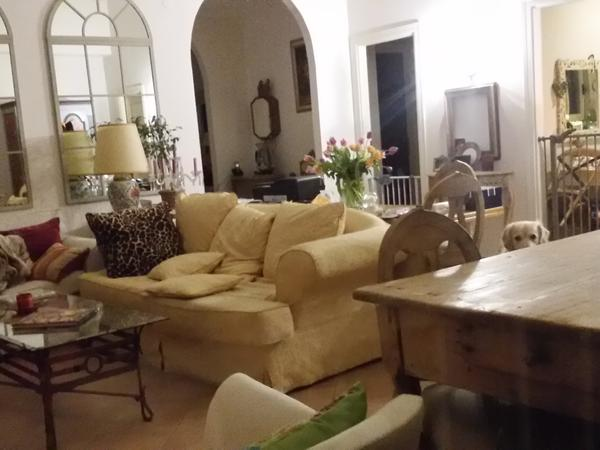 Very urgent!  House and dog sitters for small private kennles   in Tuscany would suit mature couple for 12or 14 days   near the  end of january.from about 16th  january 6 febbraio.
