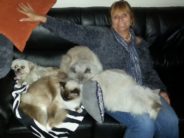 Housesitting assignment in Helensvale, QLD, Australia
