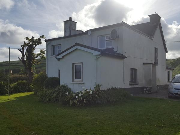 Housesitting assignment in Dingle, Ireland