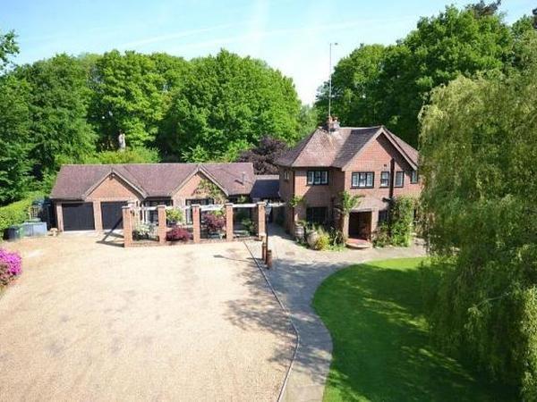 Housesitter/petsitter needed nr Dorking, Surrey for 2wks August
