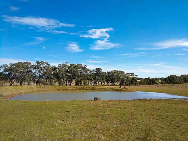 Housesitting assignment in Lancefield, Victoria, Australia
