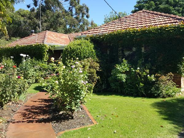 Housesitting assignment in Boyanup, Western Australia, Australia