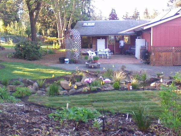 Housesitting assignment in Eugene, OR, United States