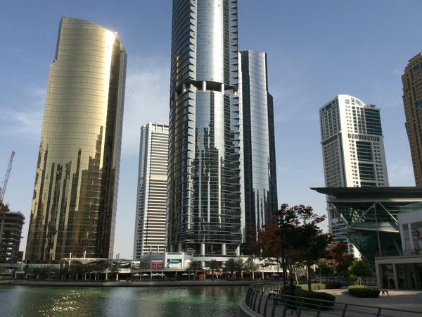 Housesitting assignment in Jumeirah Lakes, United Arab Emirates
