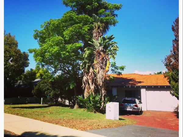 House and pet sitter needed in sunny Perth