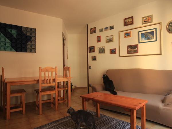 Housesitting assignment in Andorra la Vella, Andorra