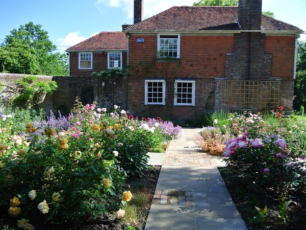 Sitter needed for cosy farmhouse in East Sussex.  Three outside cats and a Staffy terrier who is recently rescued.