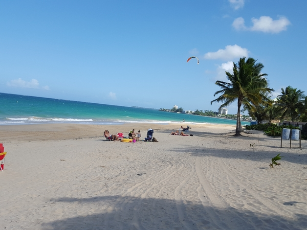 Housesitting assignment in San Juan, Puerto Rico
