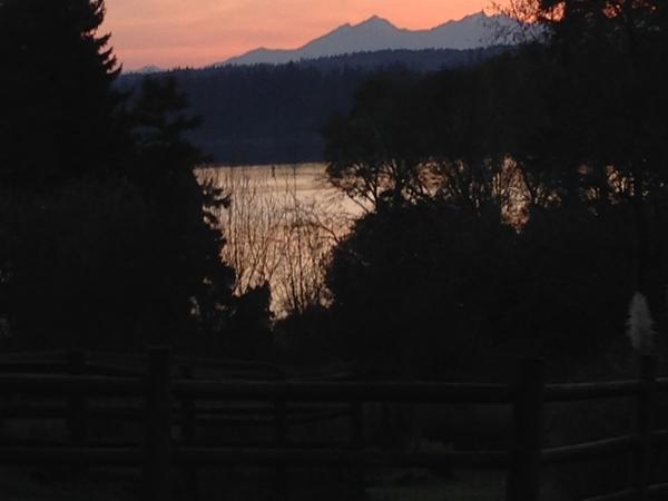 Housesitting assignment in Bainbridge Island, Washington, United States
