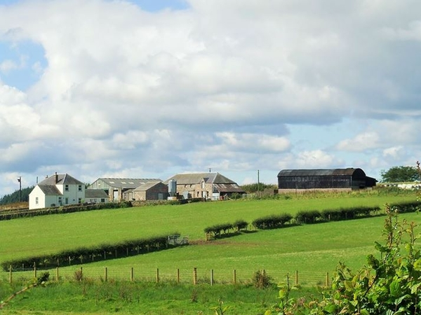 URGENTLY NEEDED- Farm Housesitter for Dogs, Cats and Poultry near to Scottish Borders, Short notice due to being let down with only 10 days to go!