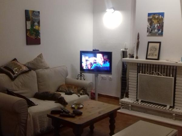 Housesitting assignment in La Línea de la Concepción, Spain