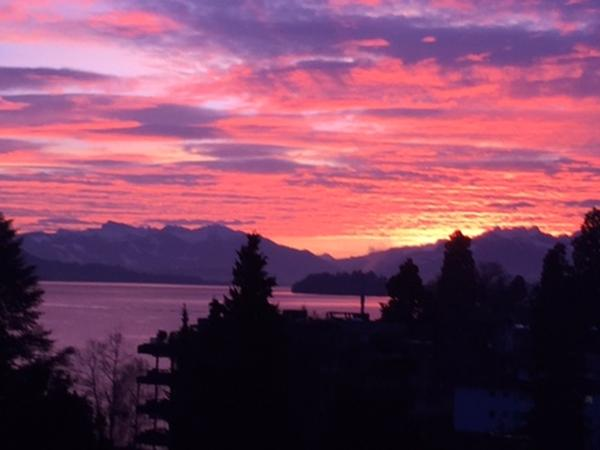 Housesitting assignment in Horgen, Switzerland