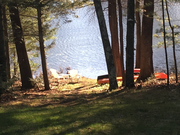 Housesitting assignment in Granby, Connecticut, United States