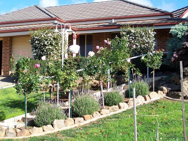Housesitting assignment in Wodonga, VIC, Australia