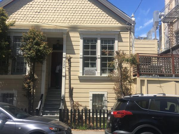 Hang out in the best neighborhood in San Francisco with a loving friendly Cat! 6/22-7/7