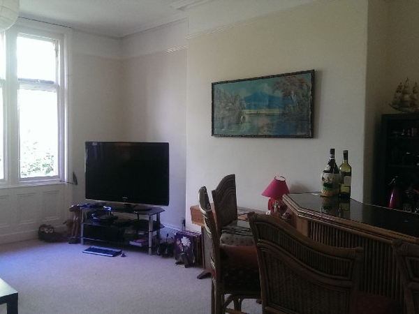 Lovely large flat in a leafy bit of Liverpool with timid cat