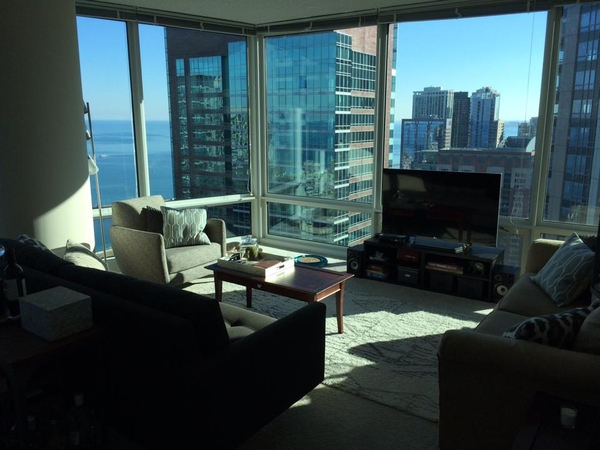 Pet Sitter Needed for 2 weeks in Downtown Chicago Luxury High Rise