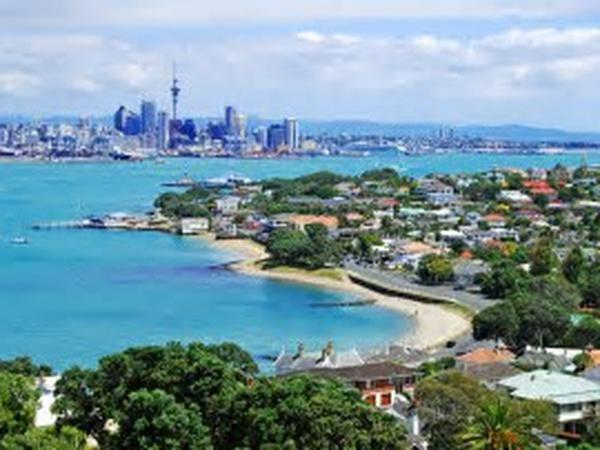 Housesitting assignment in Devonport, New Zealand