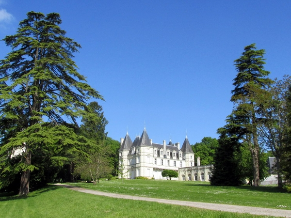 Chateau and dog sitter in Poitou (France) Gardeners welcomed