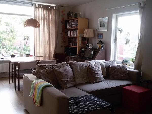 Catsitter needed in beautiful Utrecht city