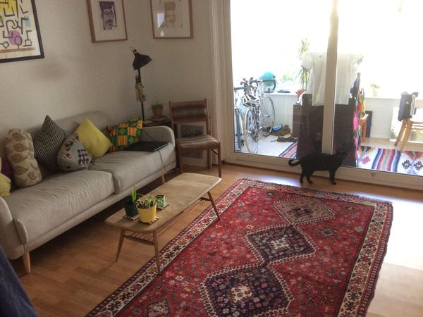 House sitter needed to look after characterful cat and blooming garden in lovely house in seven sisters