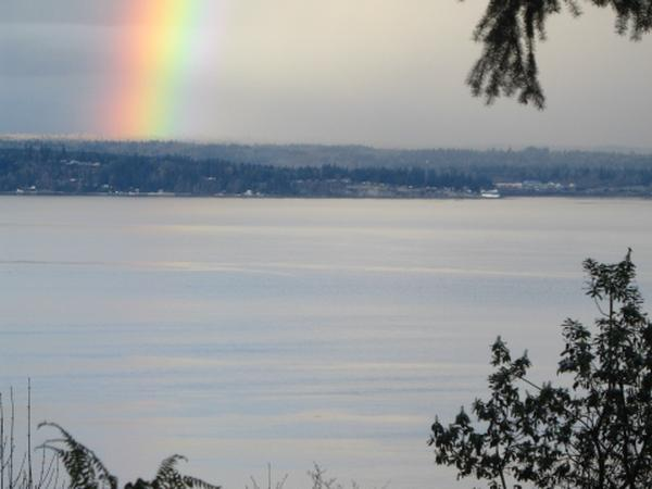 WHIDBEY ISLAND, WASHINGTON !  2 WONDERFUL DOGS and A VIEW!  RIGHT ON SARATOGA PASSAGE!