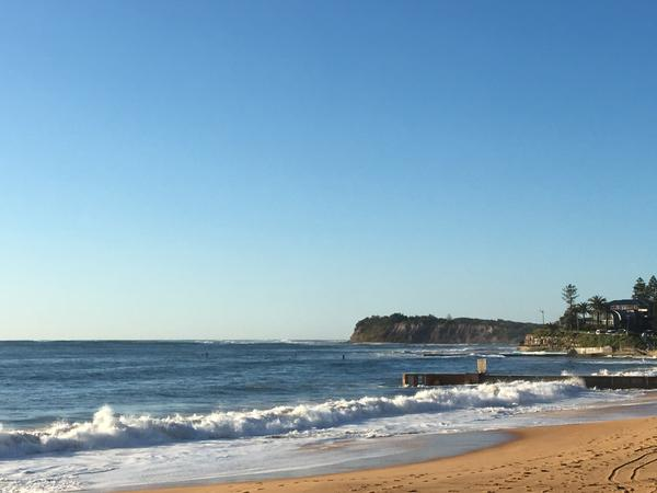 Housesitting assignment in Collaroy Plateau, New South Wales, Australia