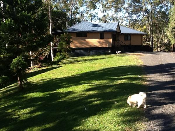 Housesitting assignment in Mount Crosby, QLD, Australia