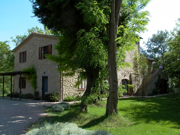 Housesitting assignment in Montone, Italy