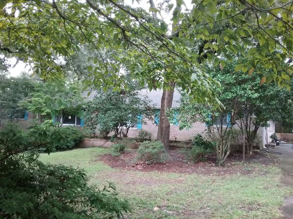 Housesitting assignment in Wilmington, North Carolina, United States