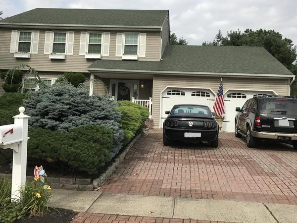Housesitting assignment in South Plainfield, New Jersey, United States