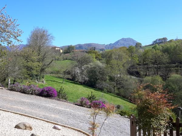 House and Dog Sitters welcomed to our home in Asturias