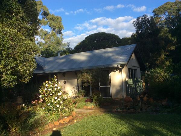 Housesitting assignment in Margaret River, WA, Australia