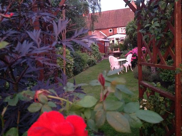 Housesitting assignment in Ollerton, United Kingdom