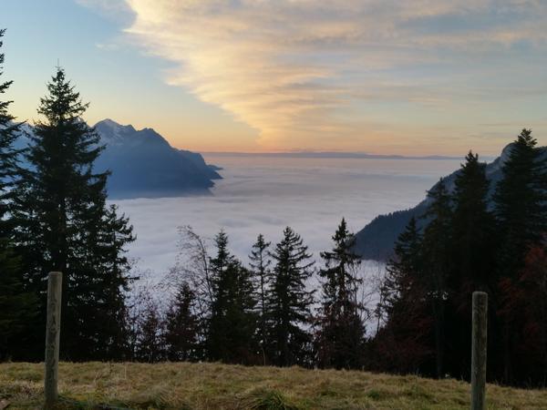 Housesitting assignment in Leysin, Switzerland