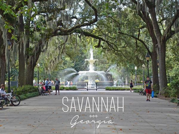 Housesitting assignment in Savannah, Georgia, United States