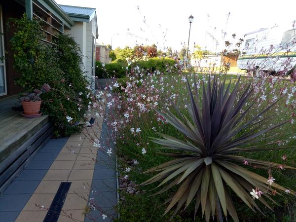 Housesitting assignment in Mount Barker, South Australia, Australia