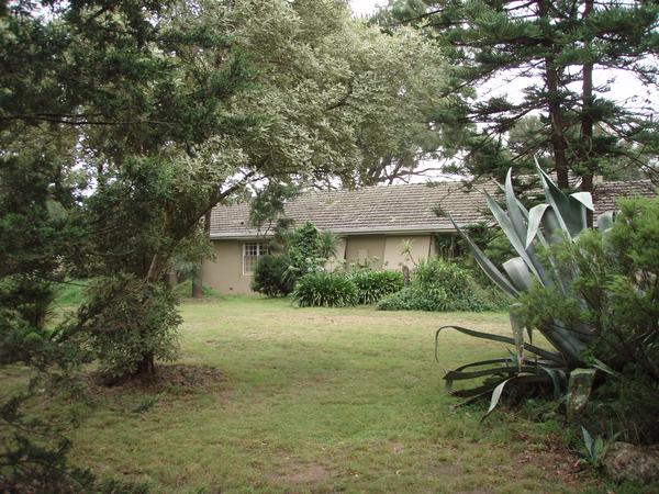 Housesitting assignment in Research, Victoria, Australia