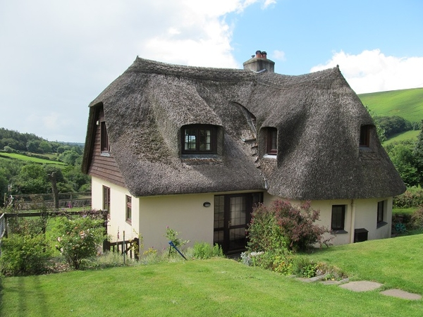 Thatched Cottage on Dartmoor plus one dog