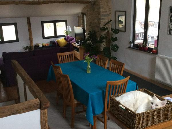 Housesitting assignment in Lavelanet, France