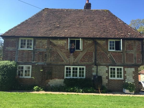 Housesitting assignment in East Harting, United Kingdom