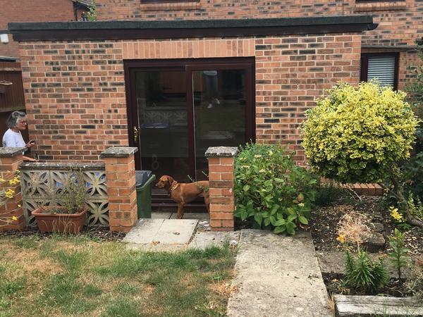 Housesitting assignment in Ramsbury, United Kingdom
