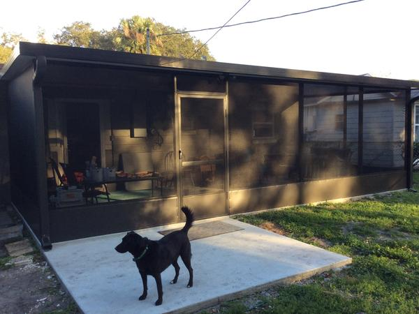 Housesitting assignment in Saint Cloud, Florida, United States