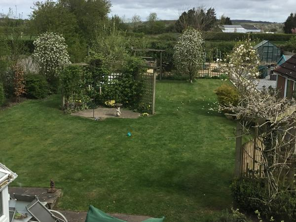 Housesitting assignment in Shiptonthorpe, United Kingdom