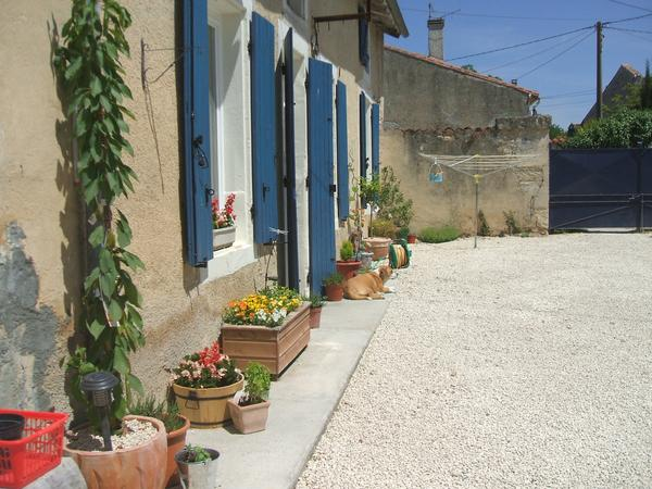 Pet sitter required for our 2 dogs & 1 cat in rural France