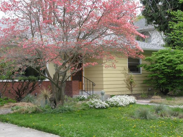 Housesitting assignment in Walla Walla, Washington, United States