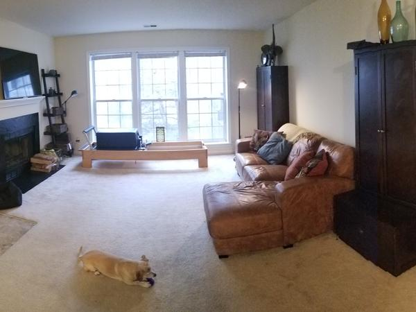 Housesitting assignment in Arlington, Virginia, United States