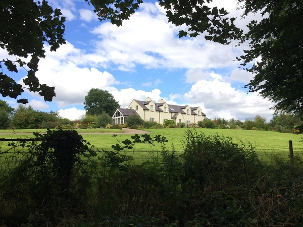 Housesitting assignment in Enniskillen, United Kingdom