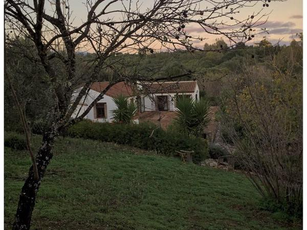 Housesitting assignment in Jimena de la Frontera, Spain