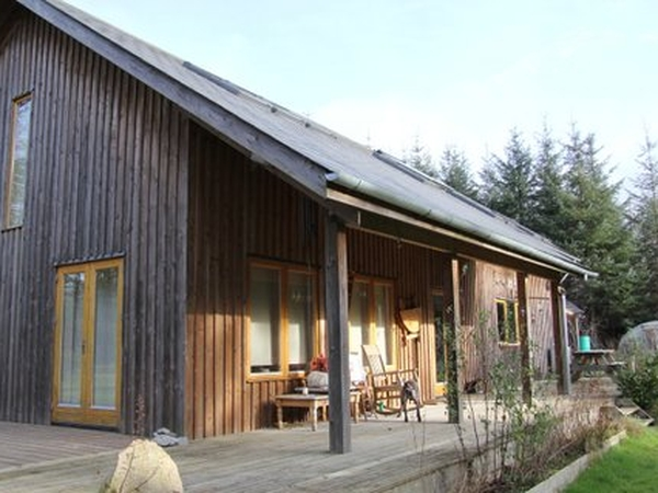 Spend Xmas & New Year in Ireland - Writer/Artists Rural Retreat in wooden house in small forest with quiet dog Holly